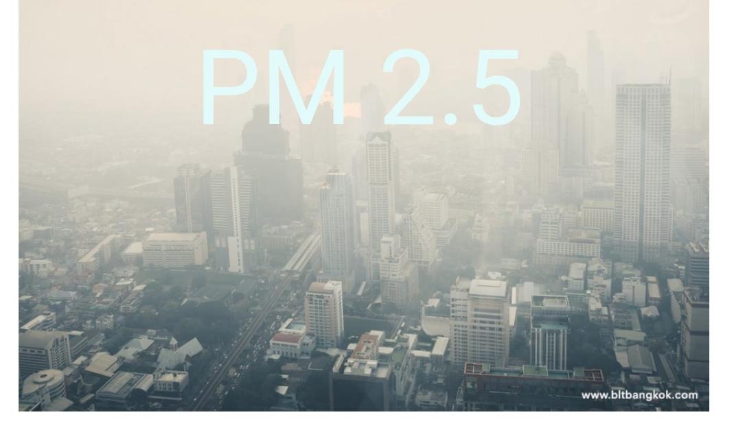 ฝุ่นละออง PM 2.5 คือ